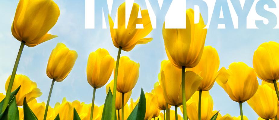 U proljeće sve raste, pa tako i naši popusti!